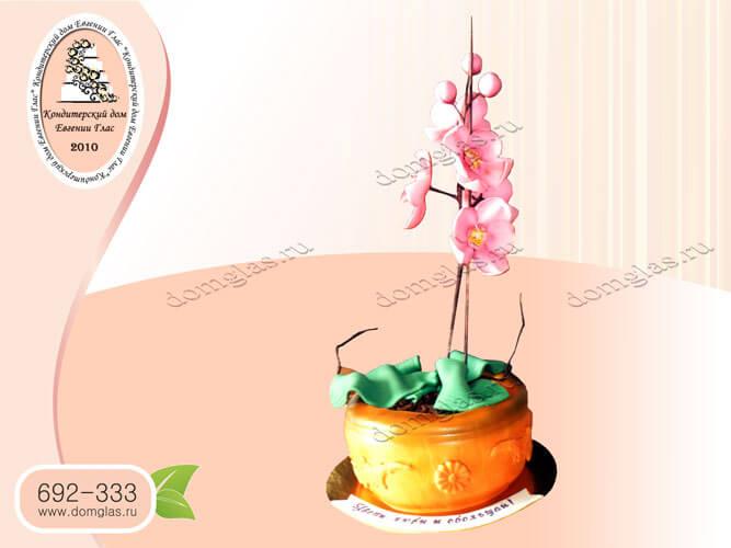 торт женский день рождения цветок орхидея горшок