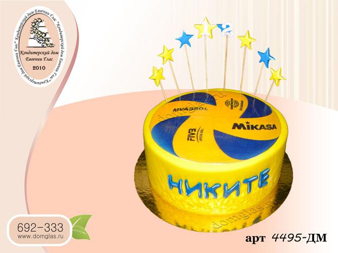 дм торт волейбольный мяч