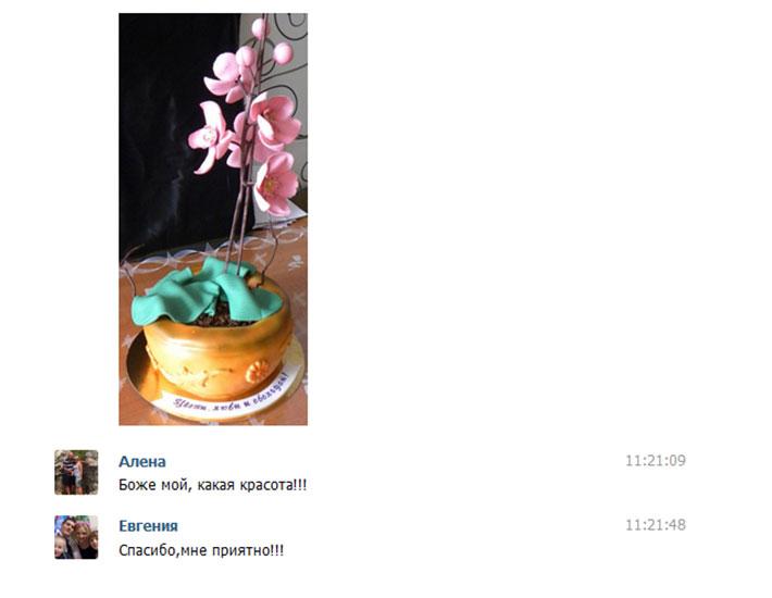 отзыв клиента торт женский цветок орхидея в горшке