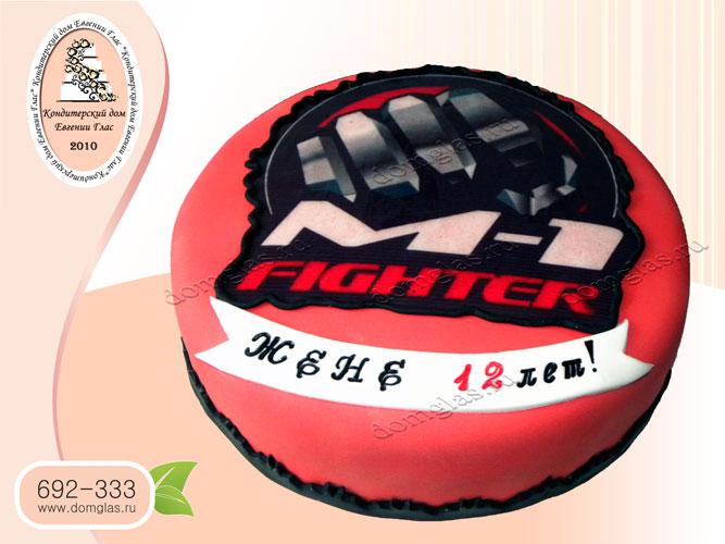 торт тематический fighter