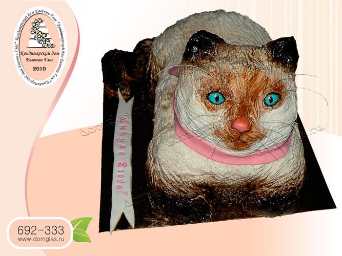 торт тематический кошка