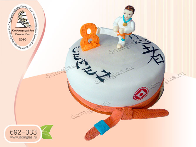 торт тематический каратэ каратист пояс